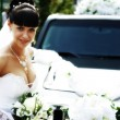 Beautiful bride - Stock Photo