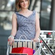 Beautifull woman with shopping cart - Stok fotoğraf
