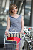 Beautifull woman with shopping cart — Foto de Stock