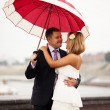 Newlyweds under umbrella — Stock Photo