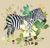 Zebra in the foresta — Stock Photo
