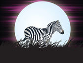 Savanna moonlight — Stock Photo