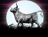 Toro en la noche — Foto de Stock