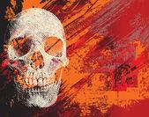 Skull for Halloween — Stock Photo