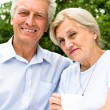Nice elderly couple — Foto Stock