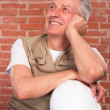 Senior builder on wall background - Stockfoto