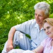 Happy elderly couple — Stock Photo #5951955