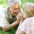 Happy elderly couple — Stock Photo #5951971