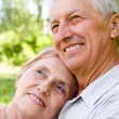 Royalty-Free Stock Photo: Cute old couple