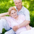Cute old couple — Stock Photo #6024916