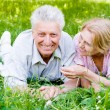 Old couple on grass — Stock Photo #6026027