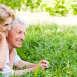 Stock Photo: Nice elderly couple