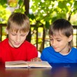 Two boys reading — Stock Photo