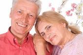 Cute old couple — Stock fotografie