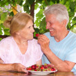 Old couple eating — Stock Photo
