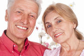 Aged couple portrait — Stock Photo