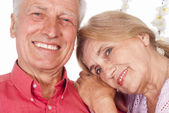 Aged couple portrait — Stock Photo