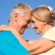 Old couple at nature — Stock Photo #6682548