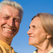 Aged couple at nature — Stock Photo #6740484