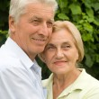 Old couple at nature — Stock Photo #6740693