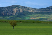 Burgos landscape — Stock Photo