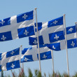 Quebec flags - Stock Photo