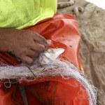 Fisherman work — Stock Photo #5725590