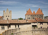 Détail des murs carcassonne — Photo