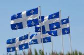 Quebec flaggor — Stockfoto