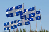 Quebec flags — Stock Photo