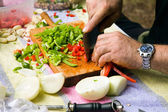 Chopping vegetables — Stok fotoğraf