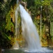 Waterfall — Stockfoto #6295243