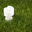 Energy Saving Light Bulb — Stok fotoğraf