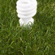 Energy Saving Light Bulb — Stock Photo