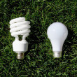 Energy Saving Light Bulb and Incandescent Bulb — Stock Photo