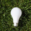 Stock Photo: Incandescent light bulb