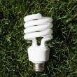 Stock Photo: Energy Saving Light Bulb