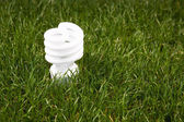 Bombilla de ahorro de energía — Foto de Stock