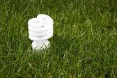 Energiesparlampe — Stockfoto