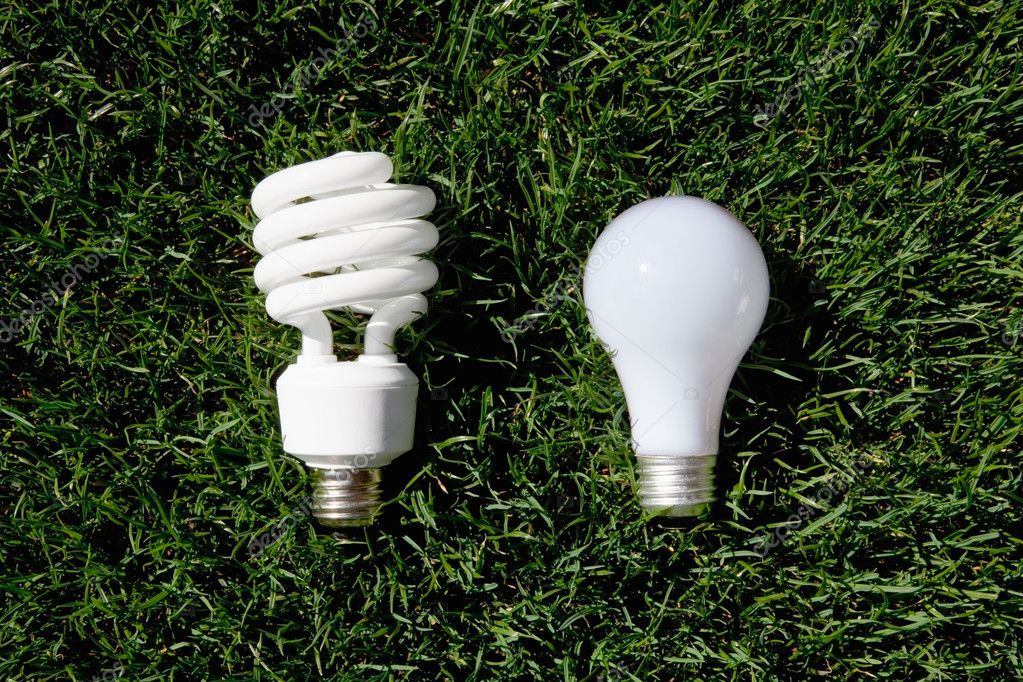 Energy Saving Light Bulb And Incandescent Bulb Stock Photo Ccstockmedia 5778647