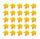 Autumn Leaves - Photo Object — Stock Photo