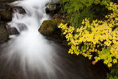 Autumn Waterfall, nature stock photography — Stock fotografie