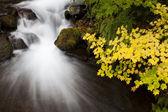Podzimní vodopád, akcií fotografie přírody — Stock fotografie