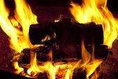 Campfire Burning — Stock Photo