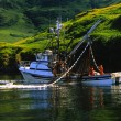 Stock Photo: Commercial Salmon fishing