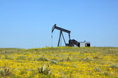 Oil Pumpjack on the Prairie — Stock Photo