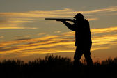 Hunter With Shotgun in Sunset — Stock Photo