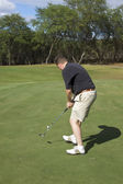 Golfer Putting on Maui — Stock Photo