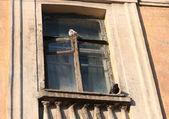 Janela antiga com dois pombos — Foto Stock