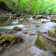 The mountain river in the spring with dim water — Foto de Stock